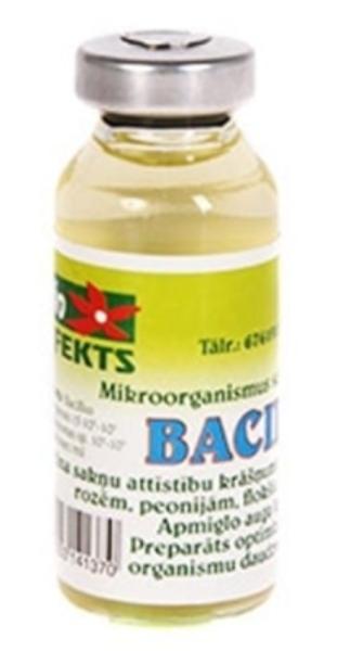 Bacilons, 20 ml