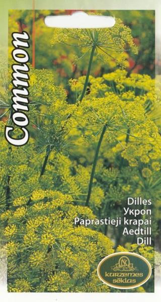 Dilles Common