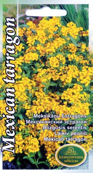 Meksikāņu estragons