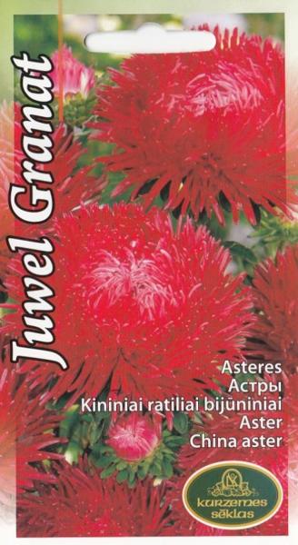 Asteres Juwel Granat