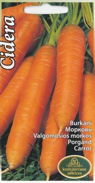 Burkāni Cidera